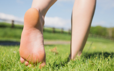 Why are feet so important?